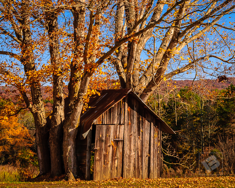 Fall at Thornburg Farm-63